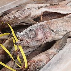 명태코다리 14~15kg