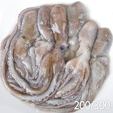 활낙지200/300 850g