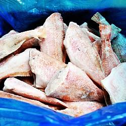 냉동 장문 볼락 4.5kg 적어 빨간고기 열기